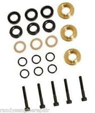 Briggs & Stratton 193807GS Pump Seal Kit Set Pressure Washers
