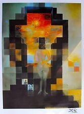 Salvador Dali Lincoln DALIVISION Limited Edition Lithograph Art