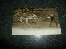 "Vintage Postcard ""If I had a Donkey And He Wouldn't Go."" Franked+Stamped 1904"