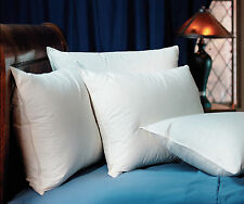 Pacific Coast Double Down Surround King Pillow Found in Ritz-Carlton Hotels