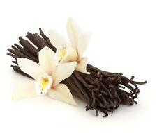 "10 Extract Grade A Gourmet Madagascar Planifolia Bourbon Vanilla Beans 6-7"""