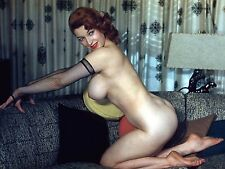 1960s Nude Model Diane Kaye Fishnet Gloves posing on couch 8 x 10 Photograph