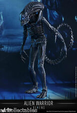 SIDESHOW HOT TOYS MOVIE MASTERPIECE - XENOMORPH ALIEN WARRIOR FIGUR - NEU/ OVP