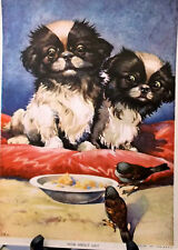 Japanese Chin, Cavalier Charles Spaniel Puppy & Bird Print 1941 Ready to Frame
