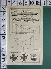 1754 ANTIQUE PRINT ~ LIZARDS ~ LOGARITHMIC CURVE ~ KINGS OF ST LOUIS MEDALS
