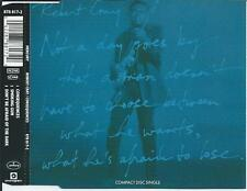 ROBERT CRAY - Consequences / Don't be afraid of the dark CD SINGLE 3TR 1991 RARE