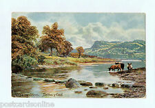C0812cg UK Bettws-y-Coed Stepping Stones Cattle Artist c1905 vintage postcard