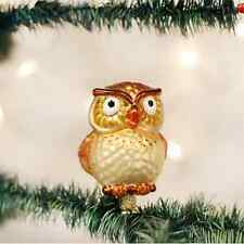 *Hootie Cutie* Owl [18106] Old World Christmas Glass Ornament- NEW