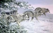 "Jorge Mayol "" Winters Moon "" # 612/950  Paper S/N W/CERT Wolves MINT 1996"