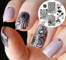Nagel Schablone Nail Art Stamp Stamping Template Plates BORN PRETTY 46