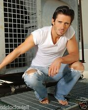 Brandon Beemer / The Bold and The Beautiful  8 x 10 GLOSSY Photo Picture