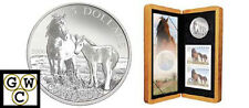 2006 Sable Island Horse & Foal $5 Pure Silver Coin & Stamp Set (OOAK) (11813)