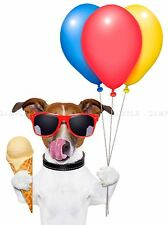 ICE CREAM JACK RUSSELL DOG BALLOONS SHADES PHOTO ART PRINT POSTER BMP2040A