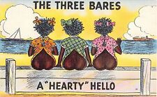 Black Americana comic postcard The Three Bares a Hearty Hello girls naked butts