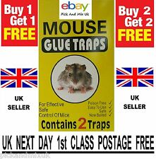 Mouse Glue Trap Mice Pest Rodent  Sticky Board Traps Catcher BUY 1 GET 1 FREE