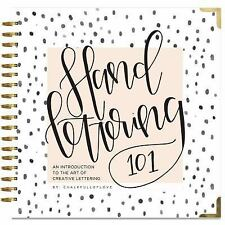 Hand Lettering 101 by Sarah Klein and Paige Tate (2016, Spiral)