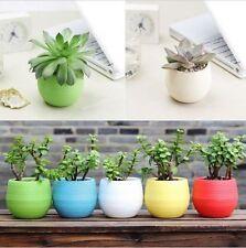 Mini Vaso colorato giardino casa pot piante plastica home ufficio bonsai