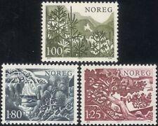 Norvegia 1977 abete rosso/Betulla/PINO/abete/Conifere/ALBERI/PIANTE/NATURA SET 3v (n44870)