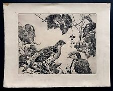 "Original AIDEN L. RIPLEY (1896–1969) signed drypoint etching ""GROUSE AND VINES"""