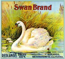 Redlands Swan #2 Orange Citrus Fruit Crate Label Art Print
