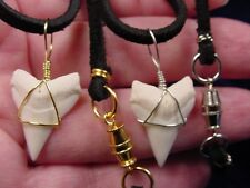 """(s21) 15/16"""" Oceanic White tip tooth Upper GOLD or SILVER wired pendant necklace"""