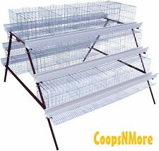 COMBO 2 PACK* 24 STALL 3 TIER A-FRAME COMMERCIAL POULTRY LAYER CAGE CHICKEN COOP
