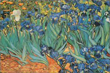 """Garden of Irises"" by Vincent van Gogh  - Fine Art Print  24 x 36"