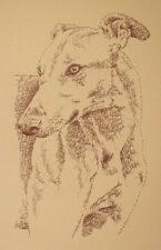 GREYHOUND TWO DOG ART PRINT #68 Kline DRAWN USING ONLY WORDS fawn red GIFT