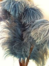 Antique Victorian Blue Ostrich Feather Fan with Faux Tortoise Spines  ~Exquisite
