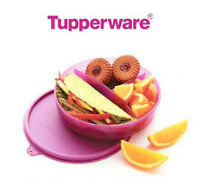 Tupperware Divided Dish Kids Lunch Box