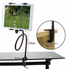 NEW Gooseneck 360 Lazy Bed Desk Stand Mount Holder For iPad 2 3 4 Air MiniTablet