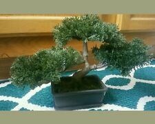NEW Artificial Japanese Cedar Bonsai Tree FREE SHIPPING Healing Meditation Budda
