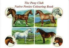 NATIVE PONIES COLOURING BOOK  BOOK NEW