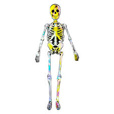 """Jumbo 60"""" Jointed Mirror Skeleton Wall Hanging Halloween Party Decoration"""