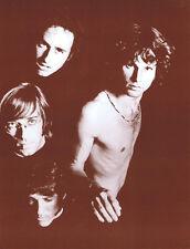 """The Doors Poster Print - Dark Group Shot - Jim Morrison - 14""""x22"""" Sepia"""