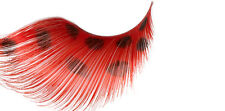 STARGAZER FALSE EYELASHES EYE LASHES #66 LONG RED WITH BLACK SPOTS FANCY DRESS