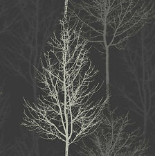 Bowland Black Sliver Forest Winter Trees 11000 Wallpaper by Holden Decor