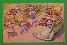 MAINZER DRESSED CATS in CLOTHES POSTCARD-Cool Green Car Surf Board 4936 Belgium