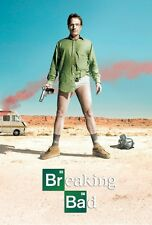BREAKING BAD POSTER ~ WALTER DESERT 24x36 TV Bryan Cranston
