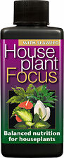 100ml House Plant FOCUS-Casa Piante Nutrienti