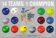2014  NEW ZEALAND S.G.  3648/3661 CRICKET WORLD CUP SPECIAL CTO MINI SHEET UNMOU