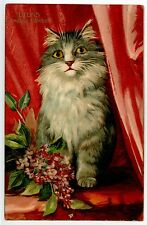 BOULANGER Lilas   LE LANGUAGE DES FLEURS . CHAT CHATS CAT CATS KATZE