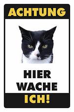Achtung Katze Motiv 2 Blechschild Schild Blech Metall Metal Tin Sign 20 x 30 cm