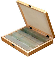 AmScope PS100D 100 Anatomy Botany Prepared Microscope Slides - Set D