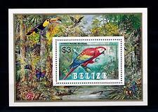 [52990] Belize 1984 Birds Vögel Oiseaux Ucelli Parrots MNH Sheet