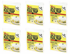 Victor M231 Ultimate High Efficiency Flea Trap Refills, 6 Packs of 3 *