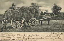 TUCK Farm Life 567 - Horse Drawn Hay Cart c1905 Postcard