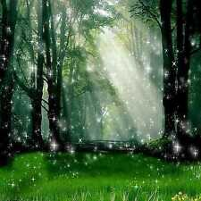 Sunlight forest 8'x8' CP Backdrop Computer-painted Scenic Background zjz-477