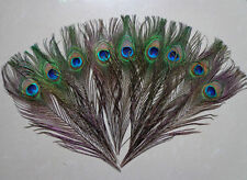"Wholesale natural 100PCS  peacock feathers eyes 10-12"" Wedding decoration"