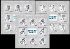 2013. Russia. Winter Games. Sochi-2014. Winter Olympic sports. Panes. MNH